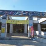 本日の会場は千葉県立中央博物館