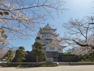 千葉城と桜
