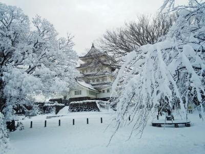 雪の千葉城といのはな亭