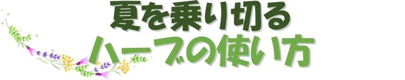 庭園文化講座「夏を乗り切るハーブの使い方」6月22日(木)開催