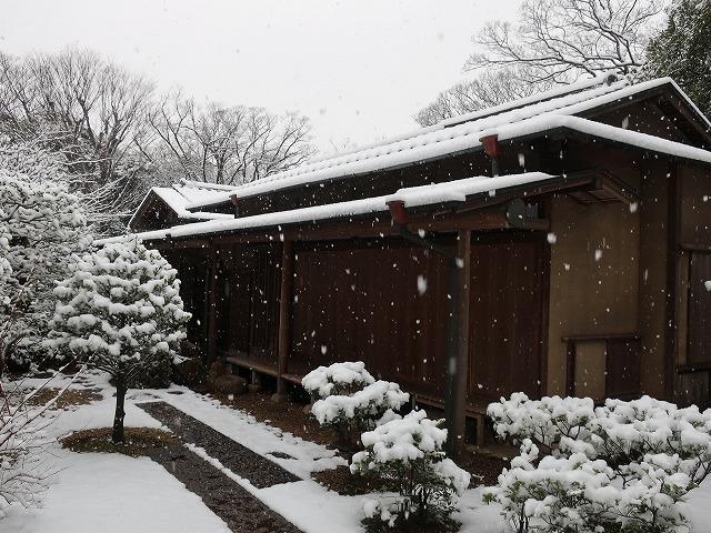 いのはな亭の雪景色